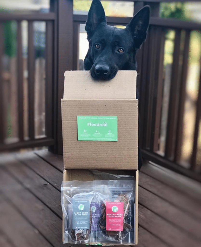 real-pet-food Best Instagram Accounts of 2017