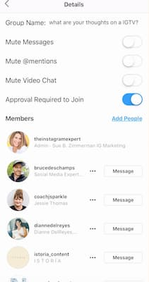 Instagram Stories chat with options to mute messages, @ mentions and video chats.