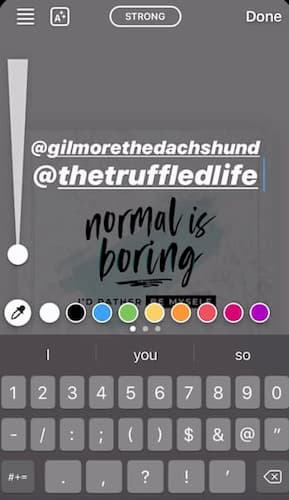 Tagged accounts over a neutral Instagram Stories graphic.